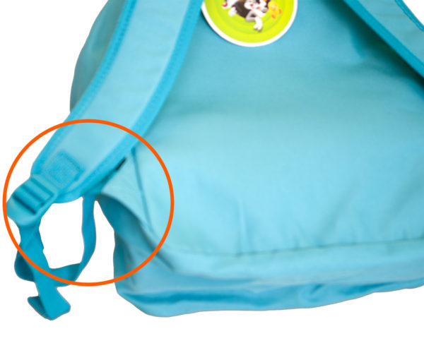 Looney Tunes Backpack for young kids and school boys buckle and adjustable strap